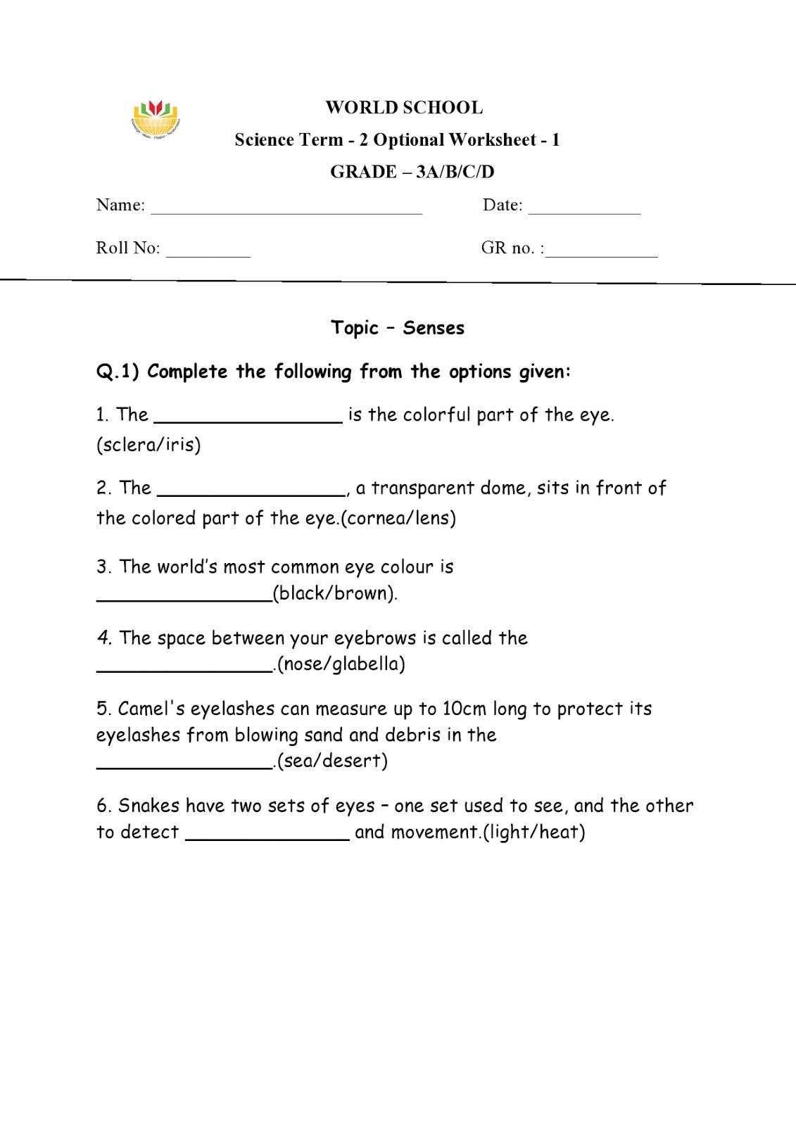 medium resolution of WORLD SCHOOL OMAN: Homework for Grade 3 as on 19-02-2019