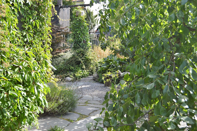 Se en hage i harmoni med seg selv - Ganger gjennom hagen. Furulunden.