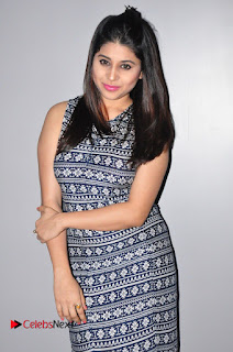 Actress Hamida Khatoon Pictures at Spa Ceylon Luxury Ayurveda Curtain Raiser  0052.JPG