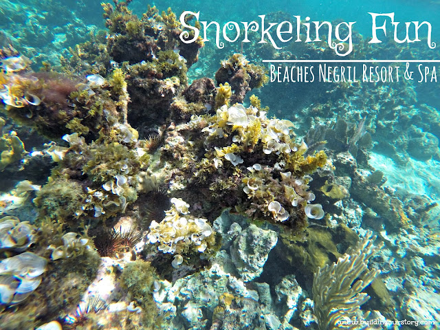Snorkeling at Beaches Resorts, Beaches Resorts, Beaches Resorts and Spa Negril Jamaica, Negril Jamaica, things to do at Beaches Negril, Watersports at Beaches resorts