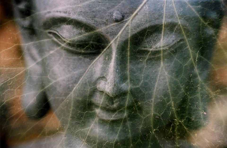 Thế nào là người tu học đúng theo lời Phật dạy?