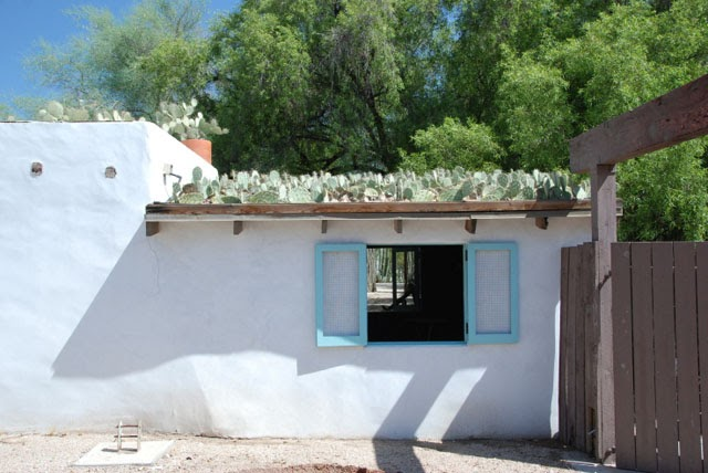 Weeds And Walls Arizona Green Roof