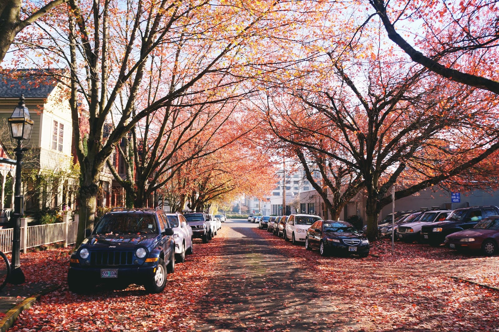tips for traveling to portland in fall/autumn + what to pack