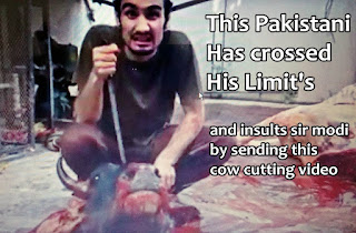 pakistani cow cutting video