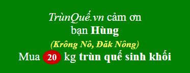 Trùn quế huyện Krông Nô