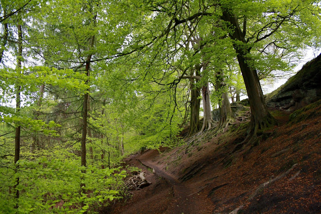 national trust alderley edge visit