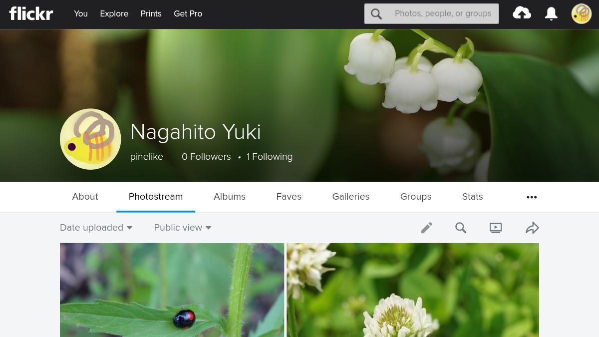 結城永人のFlickrの写真連載ページの鈴蘭の背景画像のヘッダー