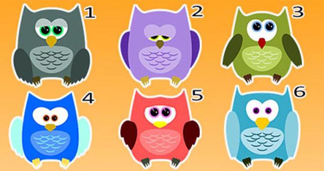Выберите сову и узнайте, о чем говорит вашвыбор!