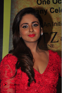 Actress Model Parul Yadav Stills in Red Long Dress at South Scope Lifestyle Awards 2016 Red Carpet  0023.JPG