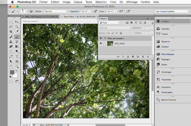 Interface Photoshop avec Preview CC
