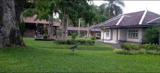 Tampak siring palace