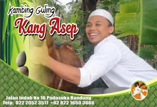 Kambing guling di bojongsoang Bandung