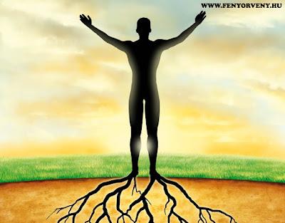 Teremtő képzelet/Vizualizáció: Földhöz rögzítés és az energia áramoltatás
