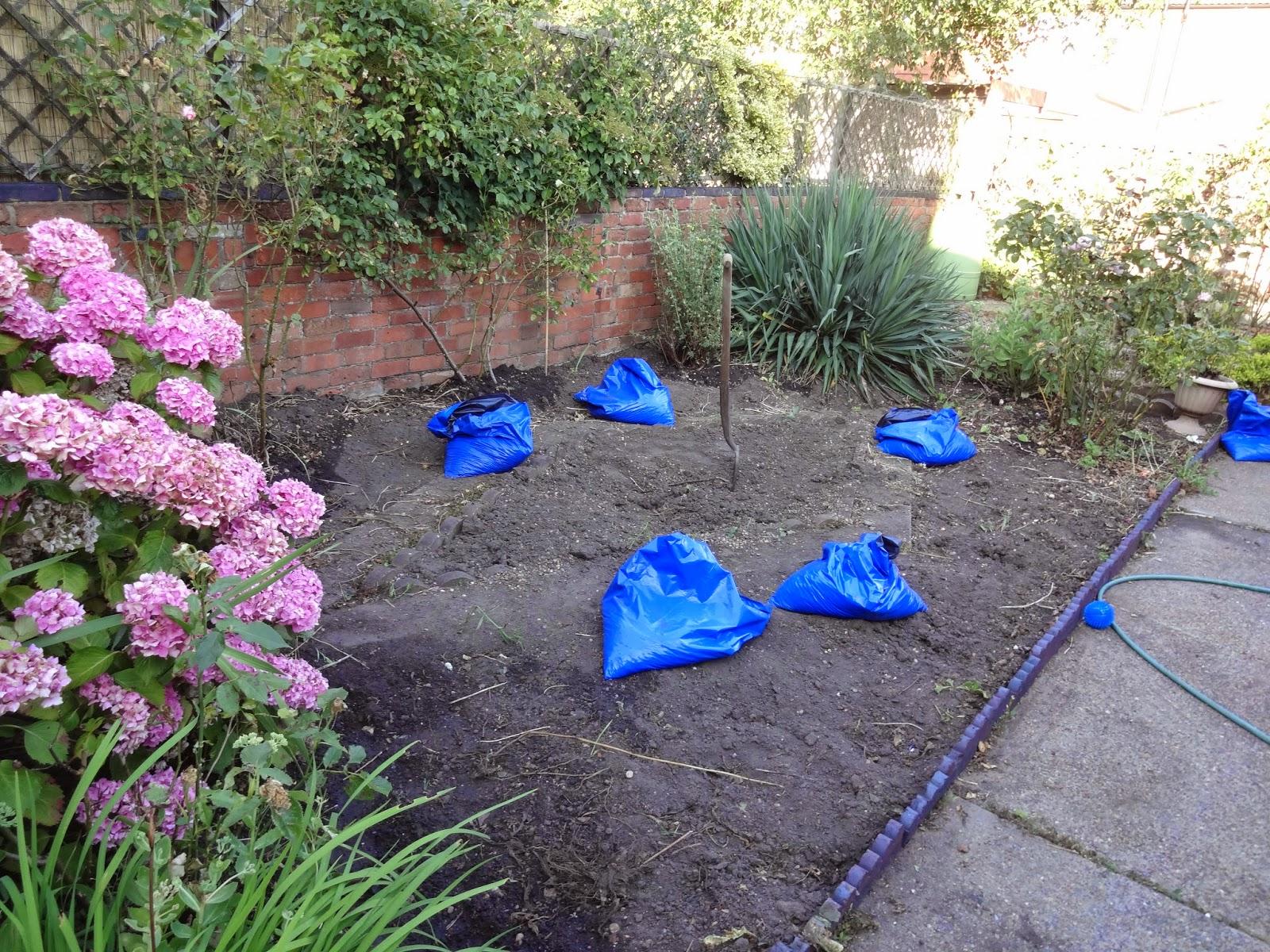 garden renovation progress