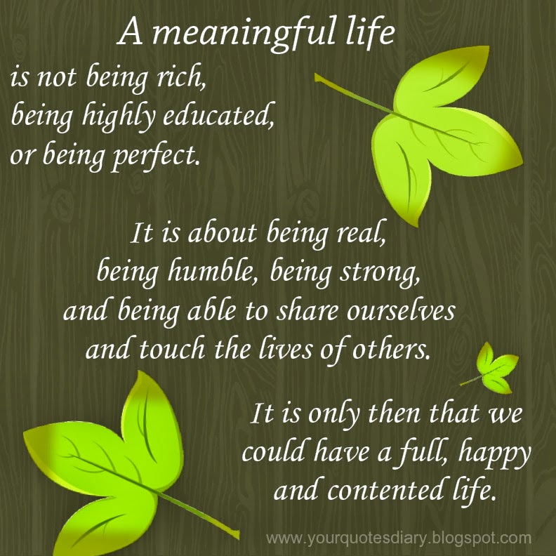 Meaningful Life Quotes: A Meaningful Life
