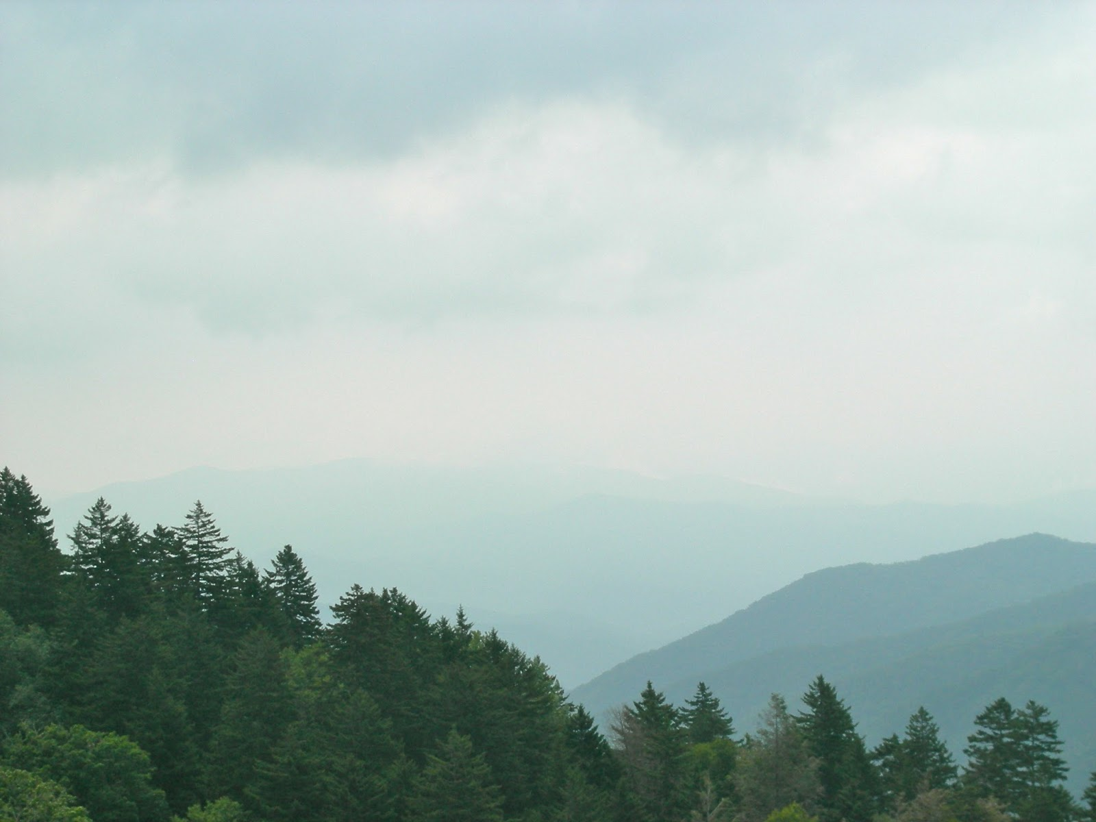 Driving across the Smoky Mountains