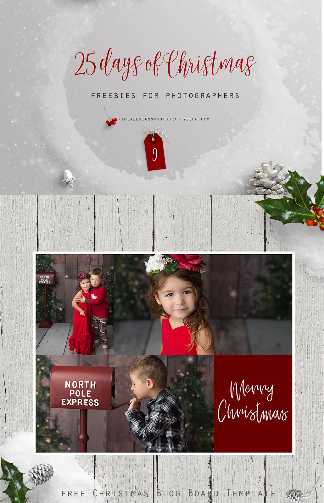 Day 9 of 25 Days of Christmas Freebies for Photographers