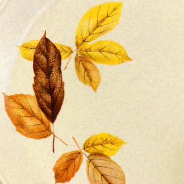 Leaf pattern of vintage johnson of Australia plates