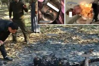 فيديو مروع.. حرق مسنّ وتفحّم جثته بعد اتهامه بإغتصاب معاقة تفاصيل مروعة لحادثة هزت الانسانية