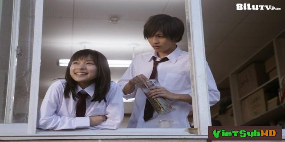 Phim Senpai Và Em VietSub HD | Senpai To Kanojo (senior And Her ) 2016