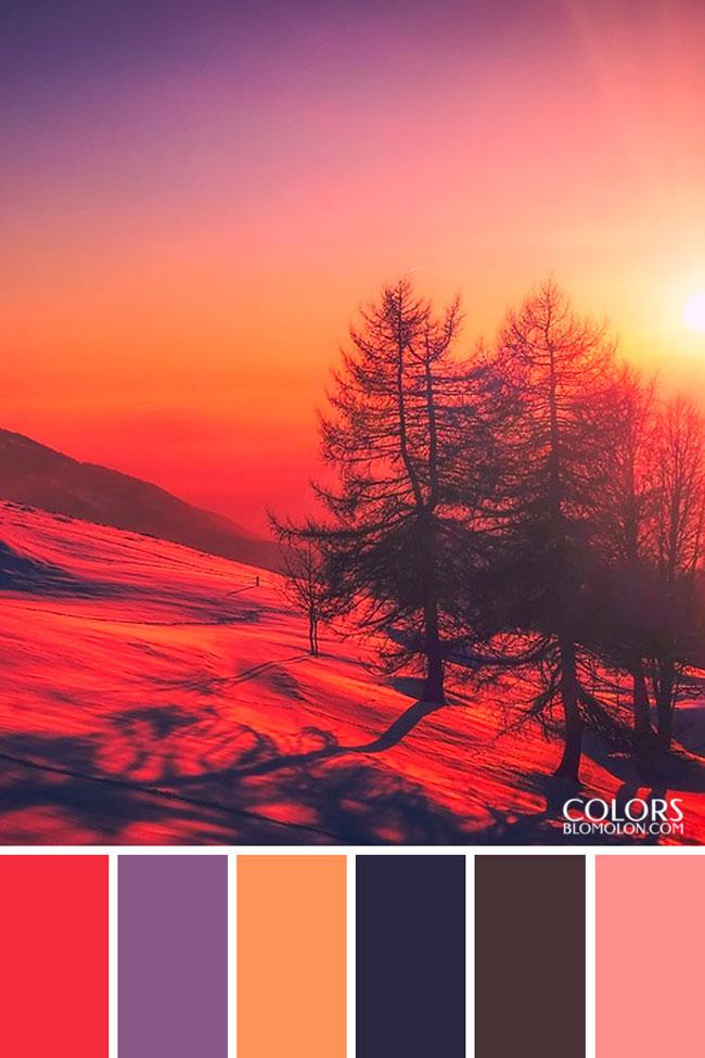 paletas_de_colores_20_especial_de_temporada_6