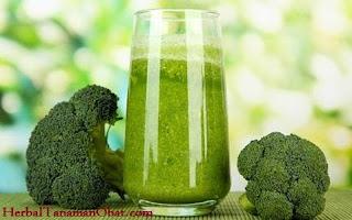 jus brokoli, cara membuat jus brokoli hijau, cara membuat jus brokoli yang benar, resep jus brokoli untuk mencegah kanker, manfaat jus brokoli hijau, jus brokoli, khasiat brokoli hijau