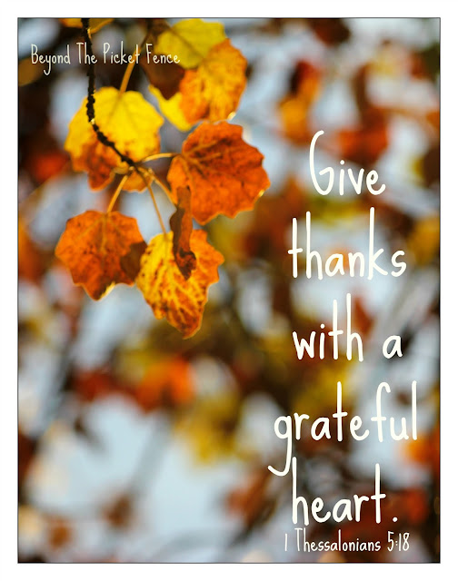 fall photo, give thanks sign, free printable, https://goo.gl/JLG2gQ