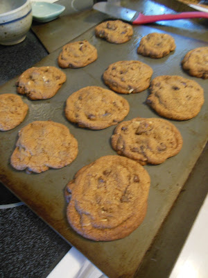 Whole Grain Browned Butter Chocolate Chip Cookies!