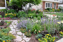 Grassless Front Yard Landscaping