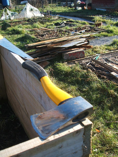 taking an axe to our storm damaged allotment shed