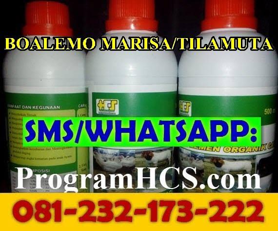 Jual SOC HCS Boalemo Marisa/Tilamuta