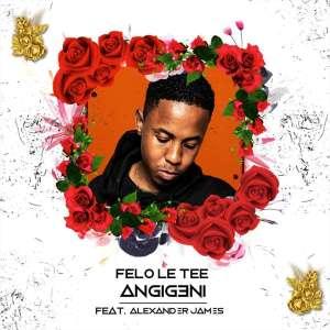 Felo Le Tee feat Alexander James - Angigeni