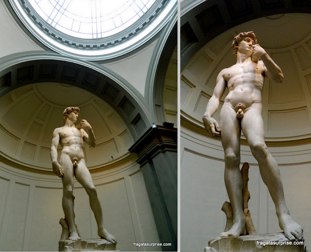 Davi de Michelangelo, Galleria dell'Accademia