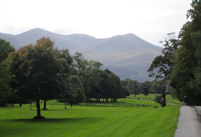 Killarney luonnonpuisto