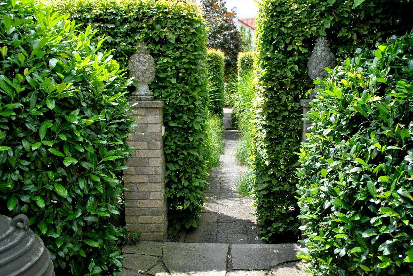 Formschnittgarten Hecken