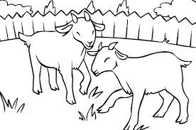 Cute Goat On Livestock Coloring Sheet For Print