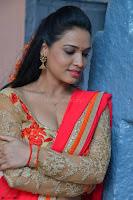 Bhimbika in Red Orange Saree at Sikhandi Movie Launch Spicy Pics 11.jpg