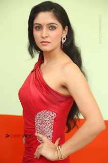 Zahida Sam Latest Stills in Red Long Dress at Badragiri Movie Opening