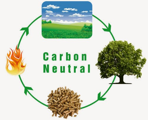 Carbon neutrality what is it