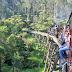 墨爾本景點|普芬比利蒸汽火車 Puffing Billy Railway 一日遊:票價、時刻、搭乘、遊記全攻略!