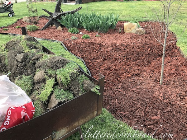 Redesigning a Flowerbed & Making it Much Bigger