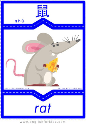 Rat - English-Chinese flashcards to learn names of wild animals