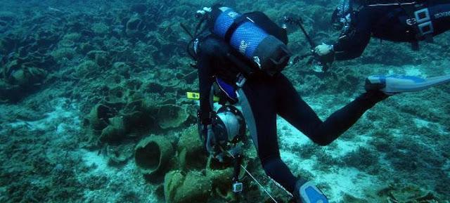 Εντοπίστηκαν 58 αρχαία ναυάγια στο Αιγαίο - Έκπληκτοι οι αρχαιολόγοι με τα ευρήματα  (βίντεο)