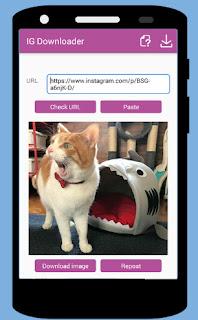isave instagram downloader apk pro