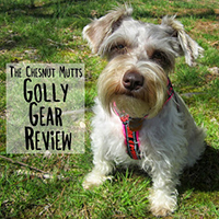 golly gear review