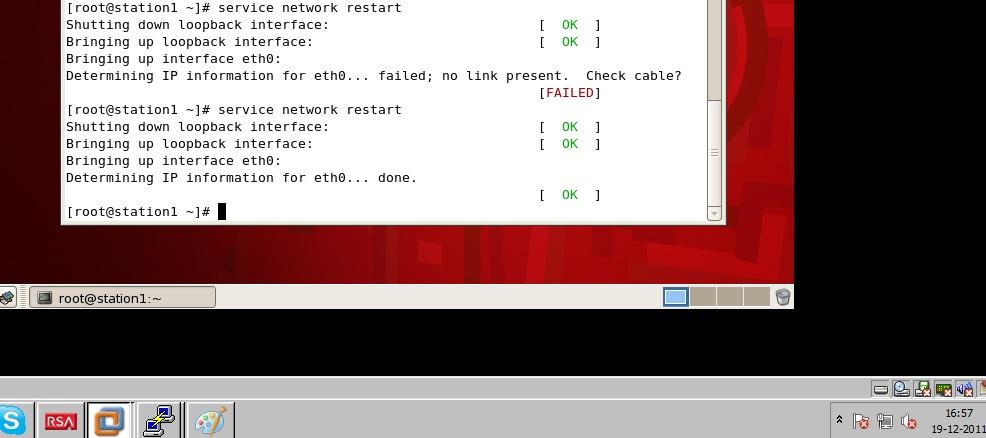 Vmware linux no link present