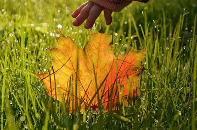 zbliżająca się jesień