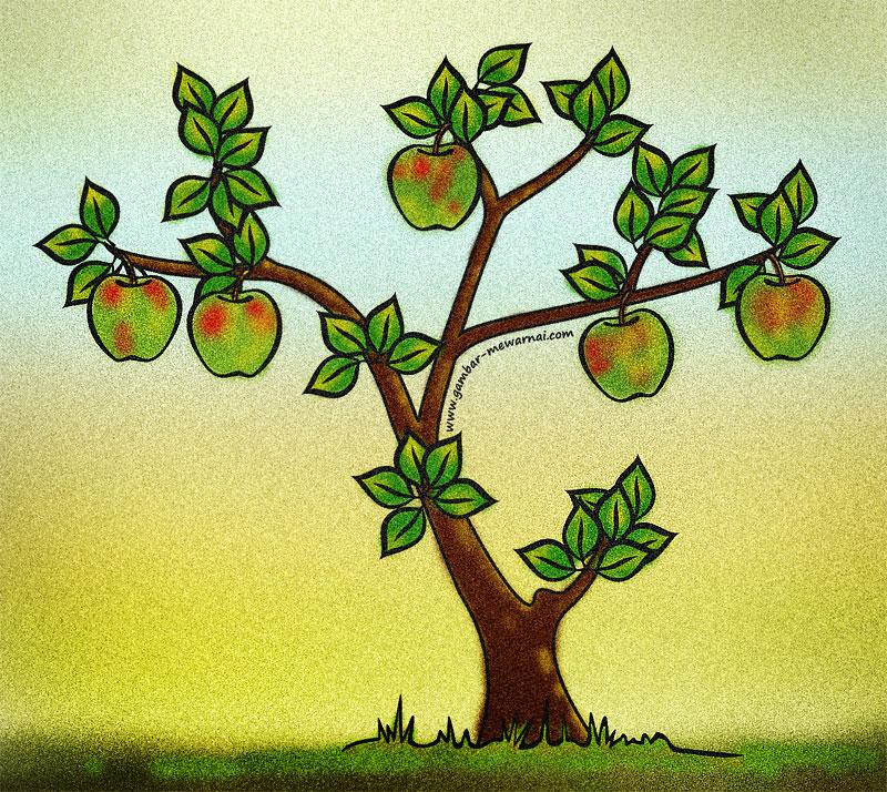 contoh mewarnai pohon apel