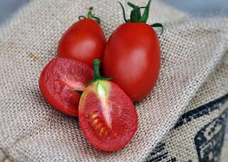 http://tomatprat.blogspot.no/2015/09/austins-red-pear-tomat.html