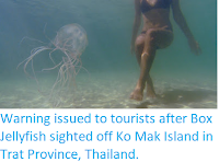 https://sciencythoughts.blogspot.com/2018/03/warning-issued-to-tourists-after-box.html